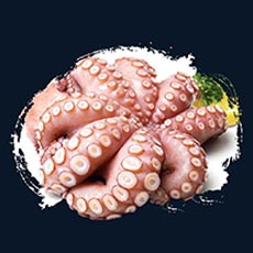 Products-Front-octopus
